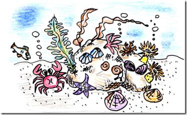 有珠アルトリ海岸海の生物観察会image