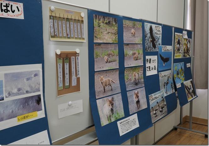 冬の勉強会展示物2_0324_2