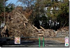 伊達開拓記念館の台風被害
