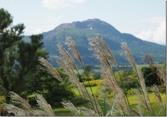 01ススキと有珠山(関内)0915_1