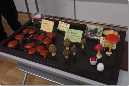 キノコの模型1127_1
