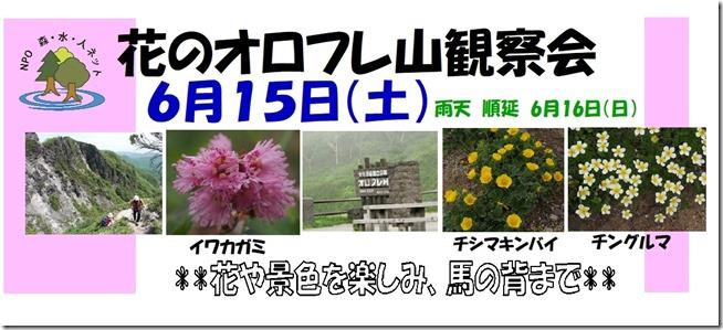 19-06-15オロフレ山観察会 森ネット