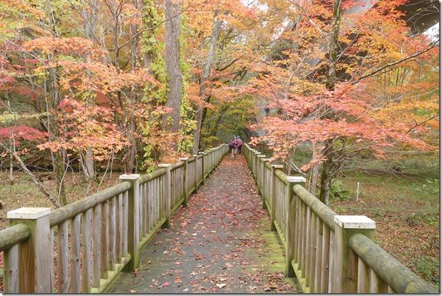 ポロト湖 散策路 紅葉